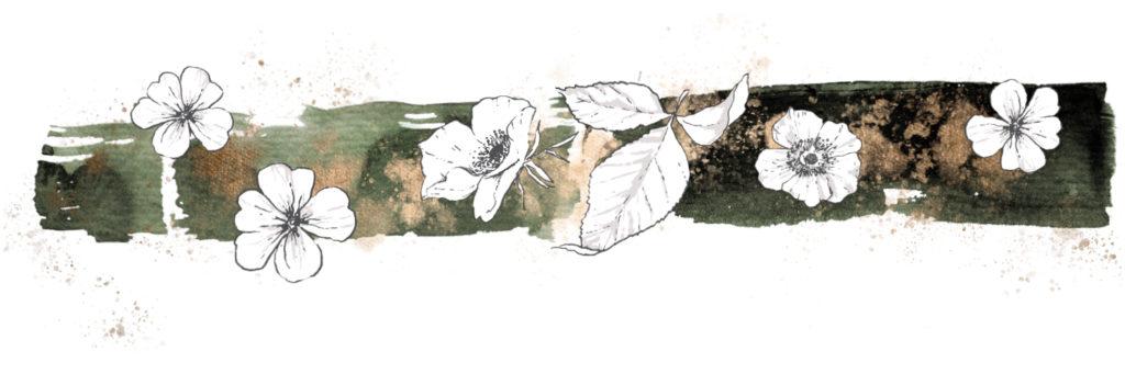 Verschiedene schwarz-weisse Blüten auf einem dunkelgrünen Hintergrund