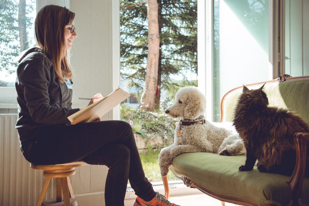 Grosspudel liegt ruhig auf dem Sofa, rechts eine Katze, vor ihm sitzt sein Instruktor