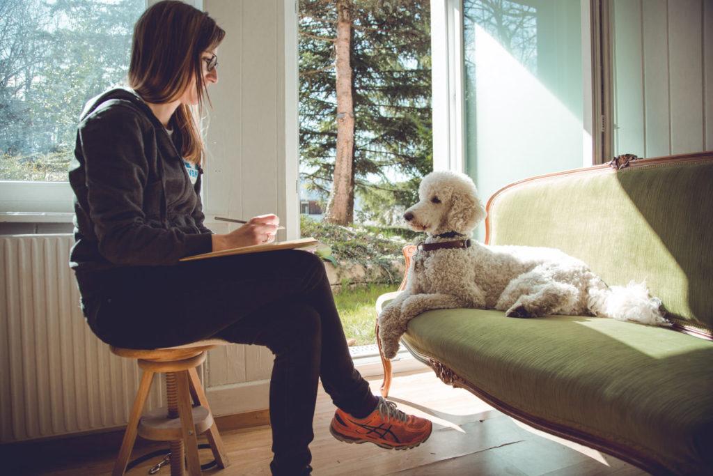 Harlekingrosspudel liegt auf dem Sofa, Blindenführhundeinstruktorin sitzt vor ihm mit Klemmbrett.